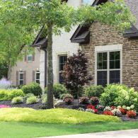 With professional landscape services, your home is sure to impress everyone who sees it.