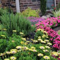 With the right colors, types, and design... flowers can turn your property into a breathtaking sight.